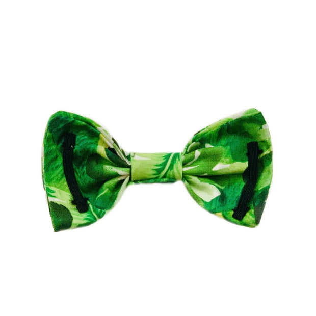 Pet Lifestyle - The California Dog Collar Bow Tie