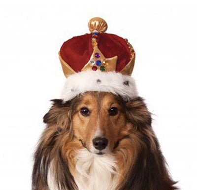Pet Lifestyle - The King's Crown Dog Hat In Red