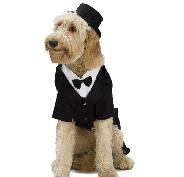 Pet Lifestyle - Top Hat Dog Costume