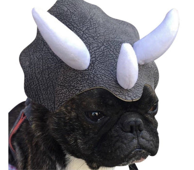 Pet Lifestyle - Triceratops Pet Costume, Pet Dinosaur Hat