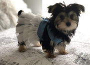Pet Lifestyle - White Tutu Jean Jumper Pet Dress