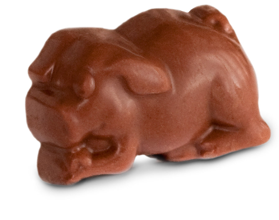 Assorted Chocolate Truffle Piglets - Floral Gift Box