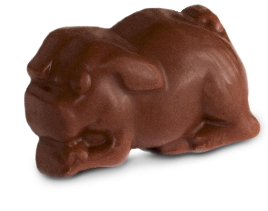 Dark Chocolate Truffle Piglets - Gift Boxes
