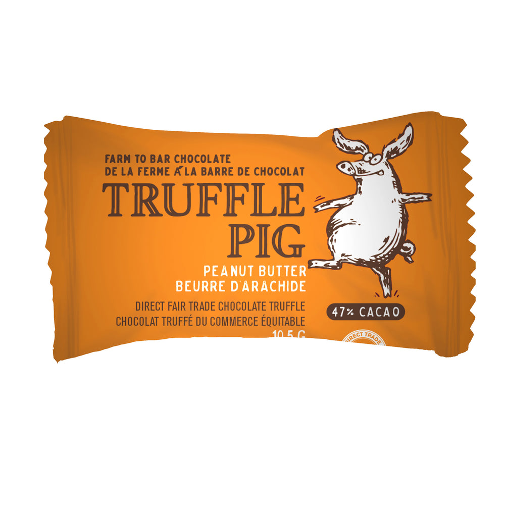 Peanut Butter Truffle Piglets - Floral Gift Box