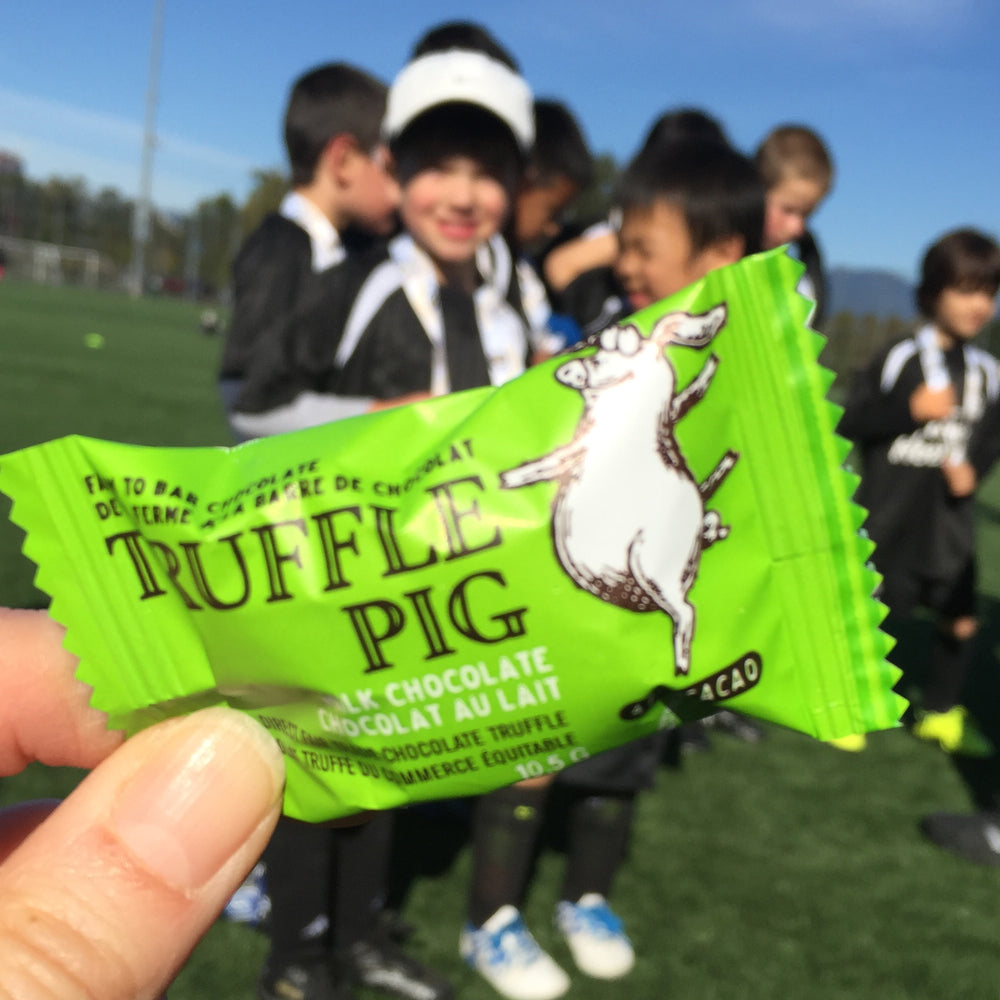 Truffle Pig Piglets - Fundraising