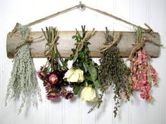 Air Drying Flowers