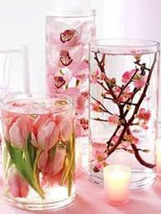 Flower Preservation in Water