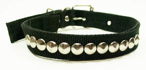 "20"" Small Stud Pet Collars Wholesale - Dallas General Wholesale"