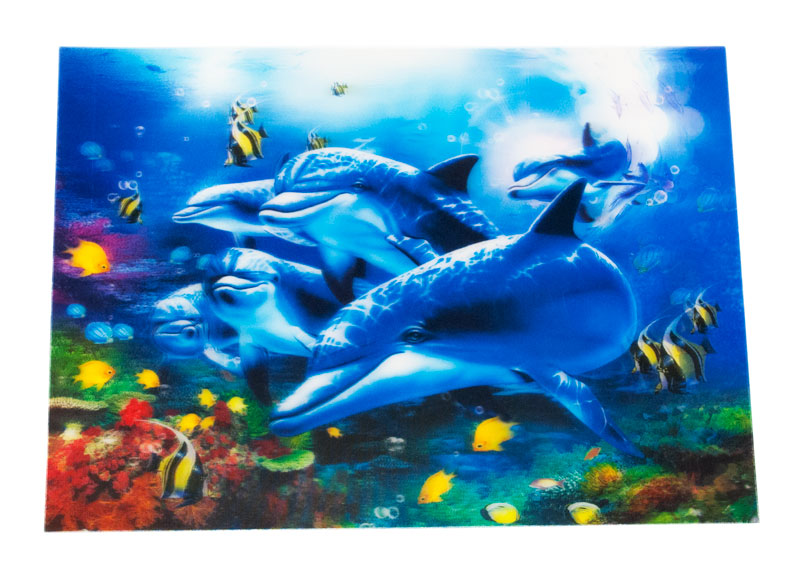 Dolphin 3D Picture - Dallas General Wholesale