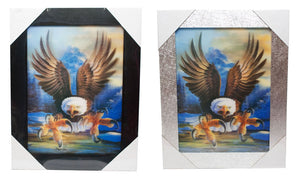 3D Picture of Flying Eagle Wholesale - Dallas General Wholesale