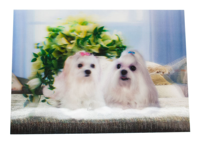 Pet Dog 3D Pictures - Dallas General Wholesale