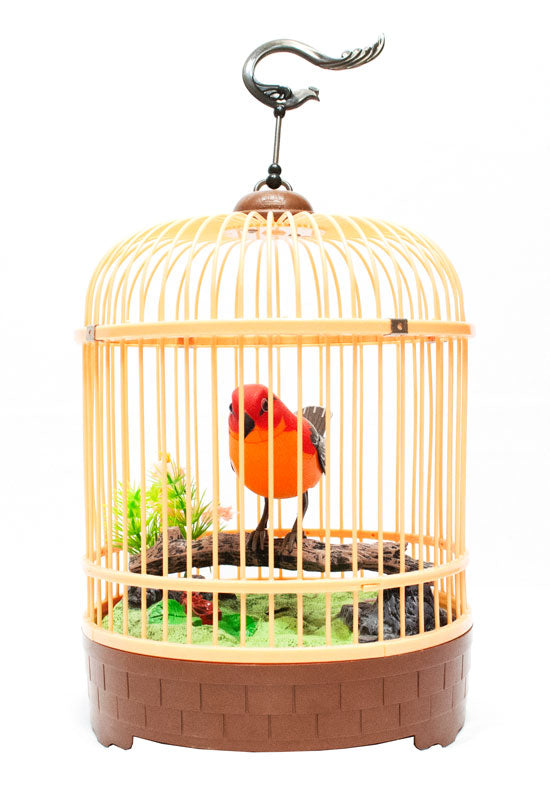 Sound & Motion Activated Singing Birds Wholesale - Dallas General Wholesale