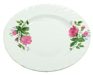 Round Plastic Plates - Dallas General Wholesale