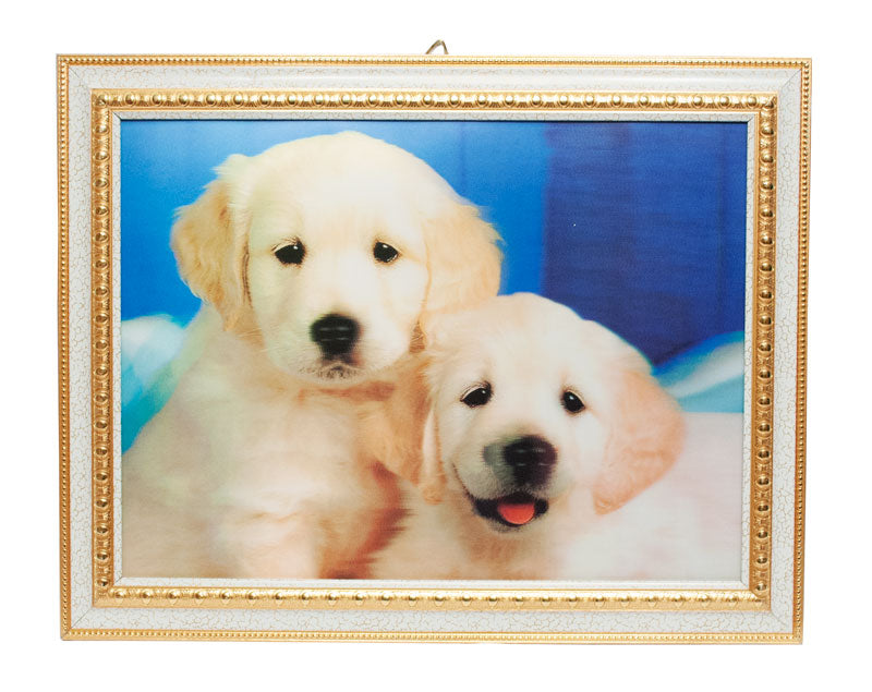 3D Picture of Dog with Frame - Dallas General Wholesale