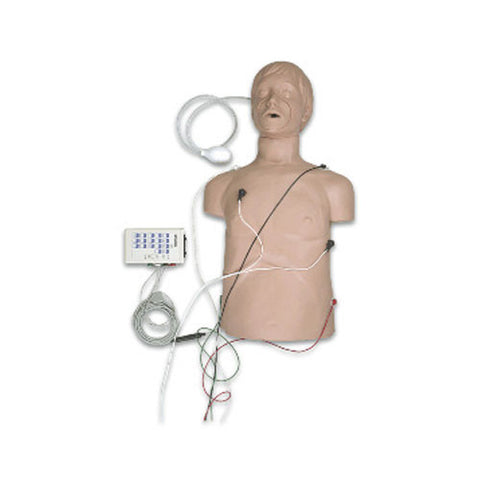 Defibrillation / CPR Training Manikin