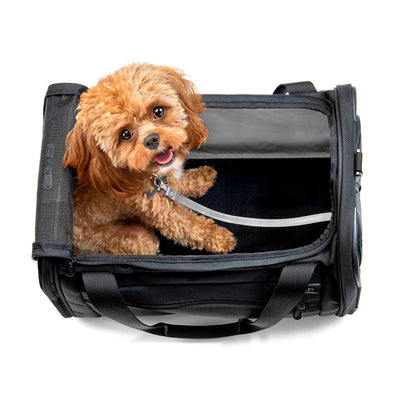 Deluxe Pet Carrier - thumb7