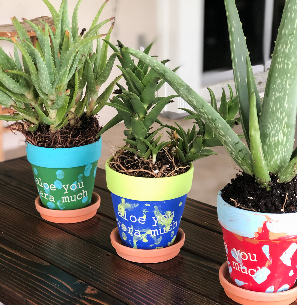 "Father's Day ""Aloe You Vera Much"" Planter"