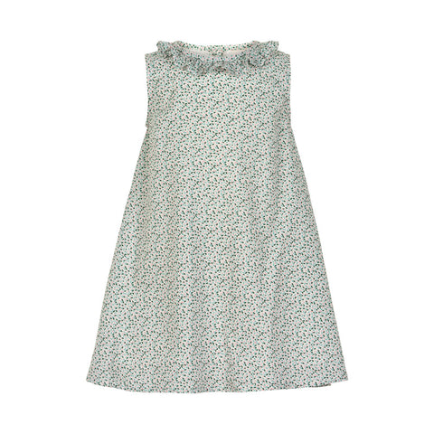 Cloud Rice Dress - Little Owly
