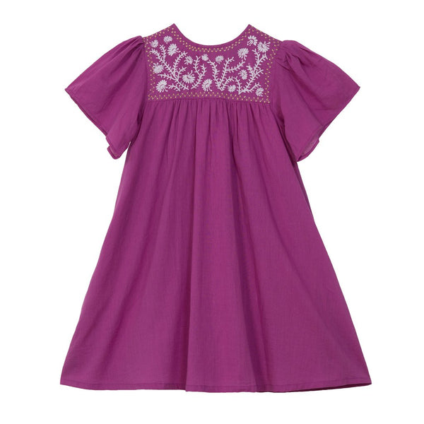 Priya Embroidered Dress - Little Owly