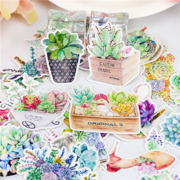 Succulent Stickers - Vivid Root