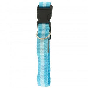 nylon blue pet collat with stripe
