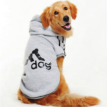 Load image into Gallery viewer, grey dog hoodie modeled by lab