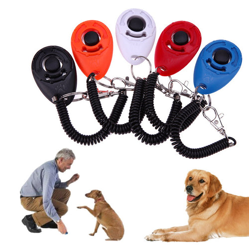 guy training dog with pet clicker from dog 360