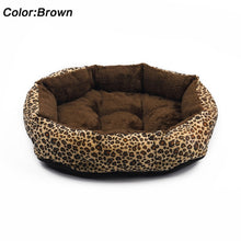 Load image into Gallery viewer, NEW Hot sales! NEW! Colorful Leopard print Pet Cat and Dog Bed Pink, Yellowish brown, Purplish red, Brown, Gray, Yellow SIZE M,L