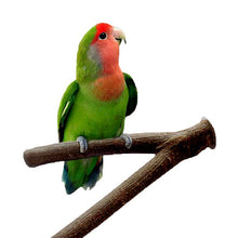Load image into Gallery viewer, Wood Parakeet Perch