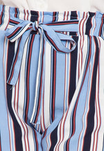 Plus Size Venice Beach Stripe Shorts in Light Blue