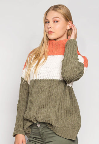 Savana Chenille Stripe Turtleneck Sweater