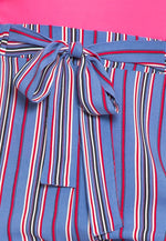 Plus Size Santa Monica Stripe Pants in Blue