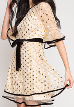 Bailey Sheer Polka Dot Party Dress