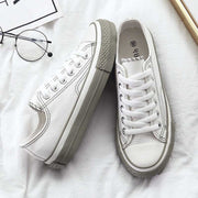 Casual wild foundation flat lace-up canvas shoes