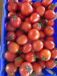 Some like it hot- Heat-tolerant tomatoes