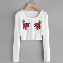 Load image into Gallery viewer, Embroidery Long-Sleeved Bikini Short Blouse
