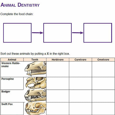 Needs of Plants and Animals - Animal Dentistry