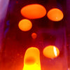 Classroom Chemistry | Lesson 6 - Lava Lamp
