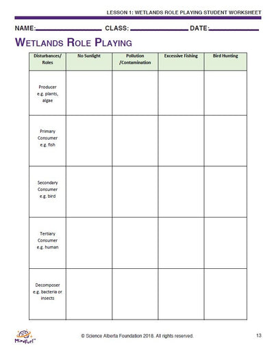 Wetlands - Let's Do Science Bundle