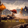 What to do with CO2