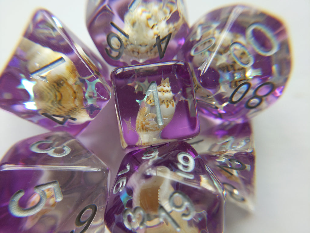 Purple Conch Dice Set, Real Seashells from the Ocean - CozyGamer