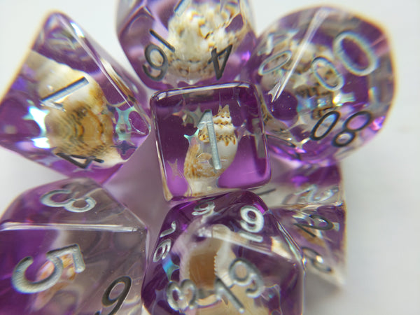 Purple Conch Dice Set, Real Seashells from the Ocean