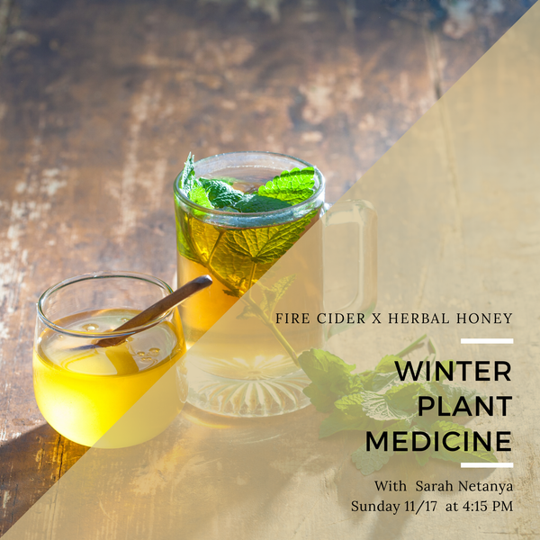 Plant Medicine: Fire Cider + Herbal Honey