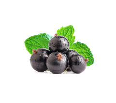 Nictel Ice Currant E-Liquid