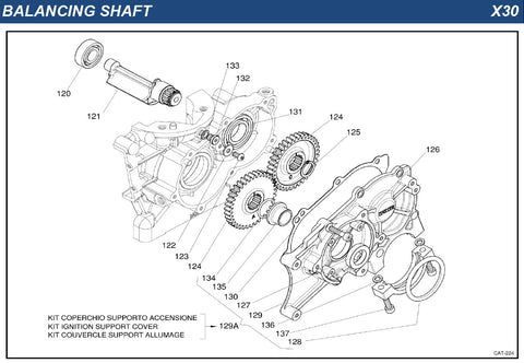Top Kart USA - IAME X30 Balancing Shaft Group