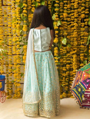 NEW ARRIVAL! Mint Green Sequin Lehenga Choli