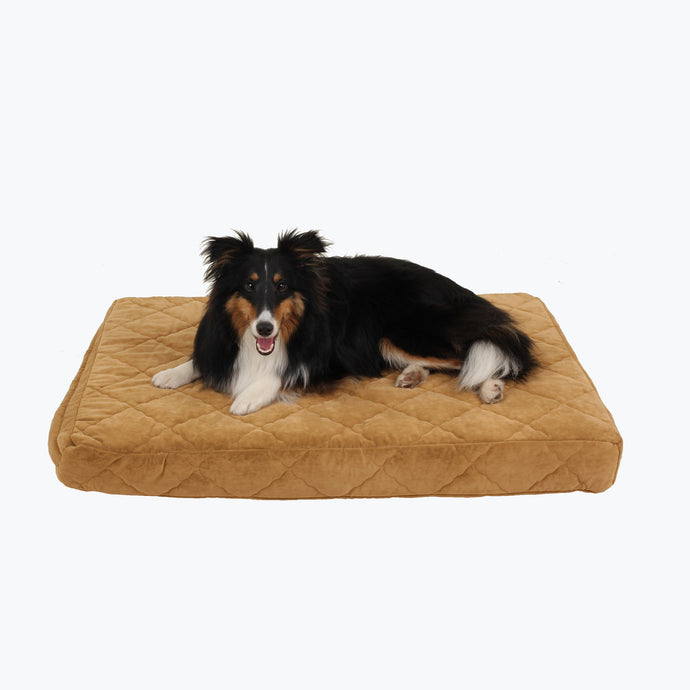 Quilted Orthopedic Rectangle Bed