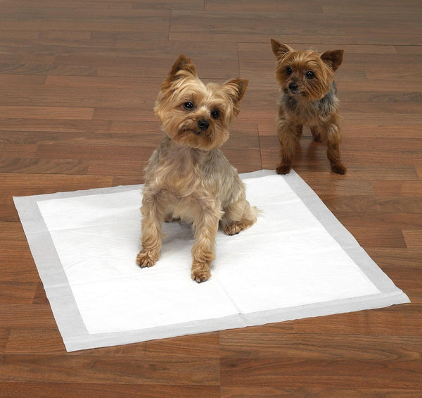 Puppy Training Pads-Max Absorbency