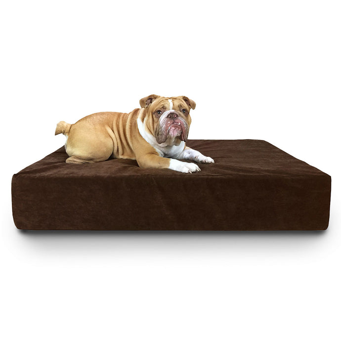 Orthopedic Caress Dog Bed - Oh My Dog Supply