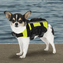 Aquatic Dog Life Preservers - Oh My Dog Supply